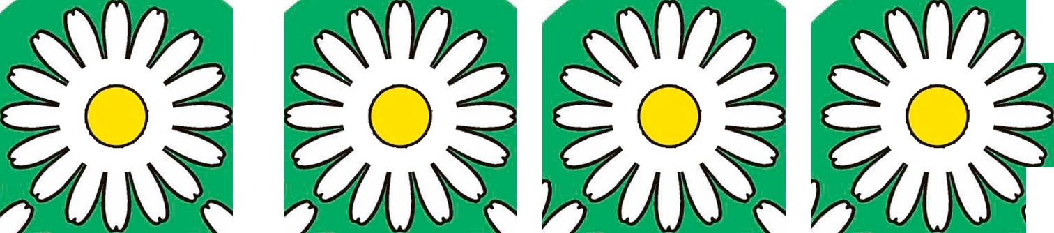 Vier Blumen